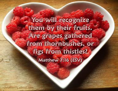 212-pixabay-raspberries-215858